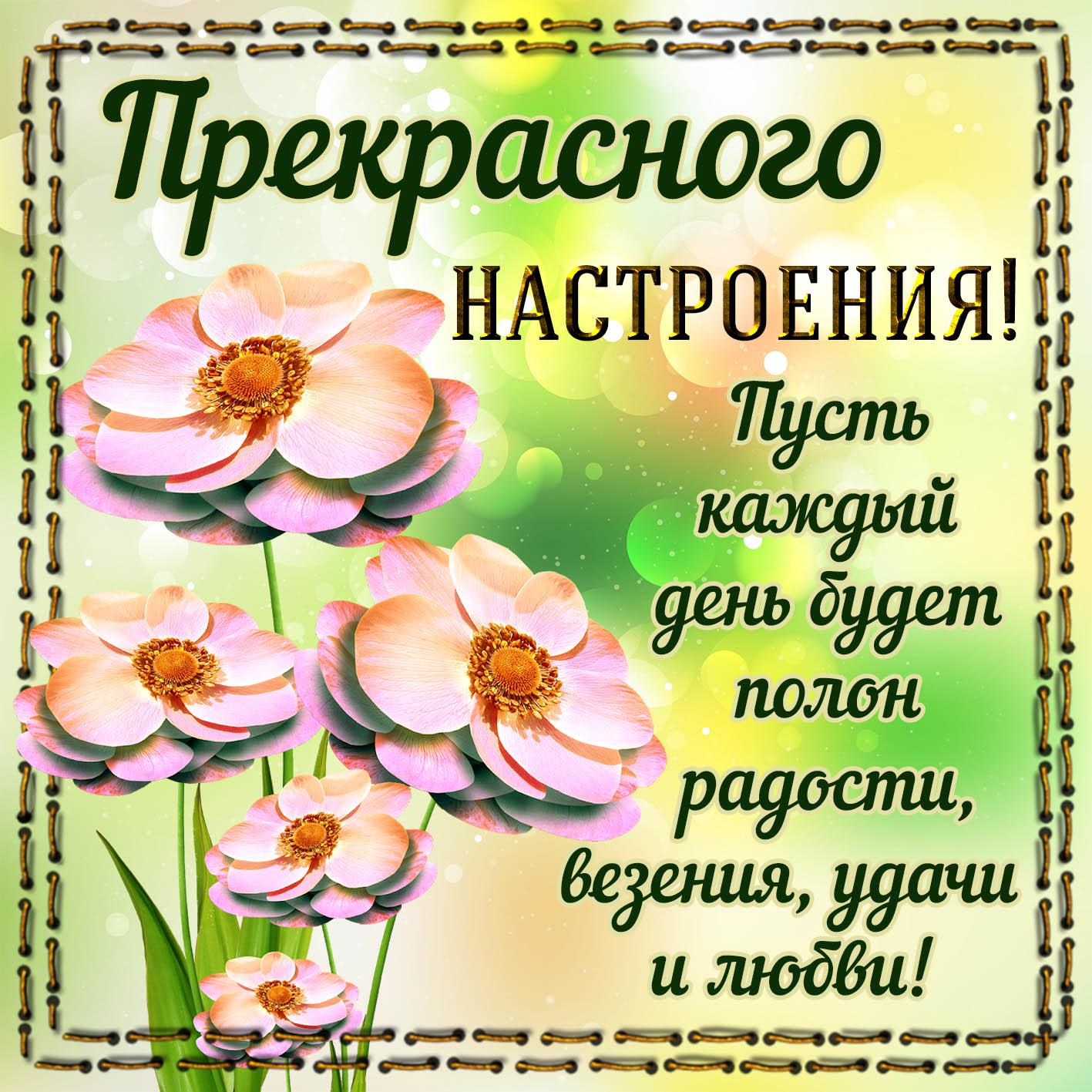 открытка гале с пожеланием удачного дня и хорошего настроения