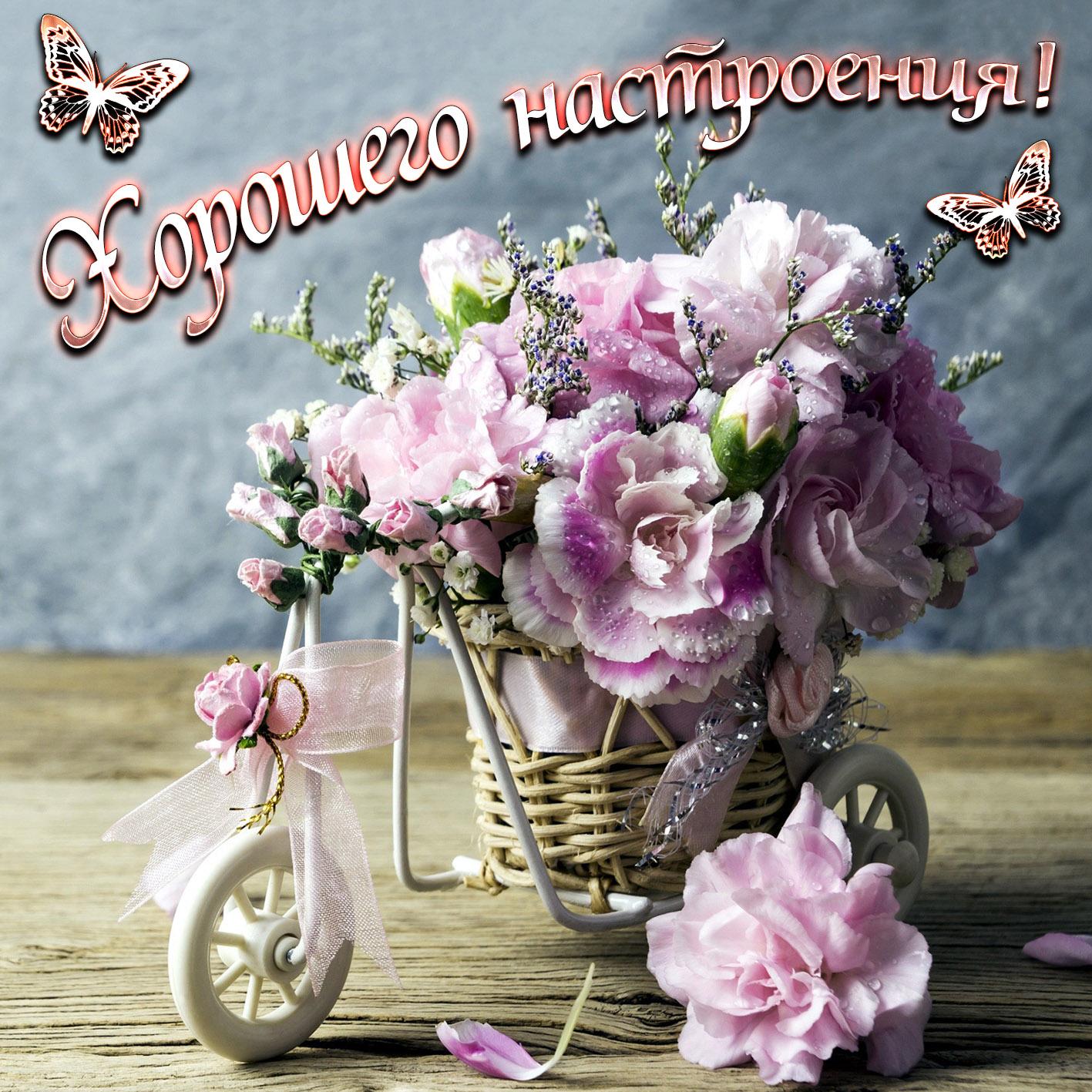 панков готов открытки с цветами и пожеланиями хорошего настроения это самый женственный