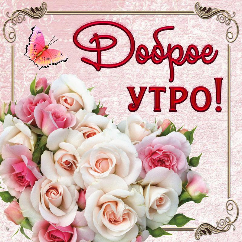 картинки розы букеты большие с добрым утром доченьку