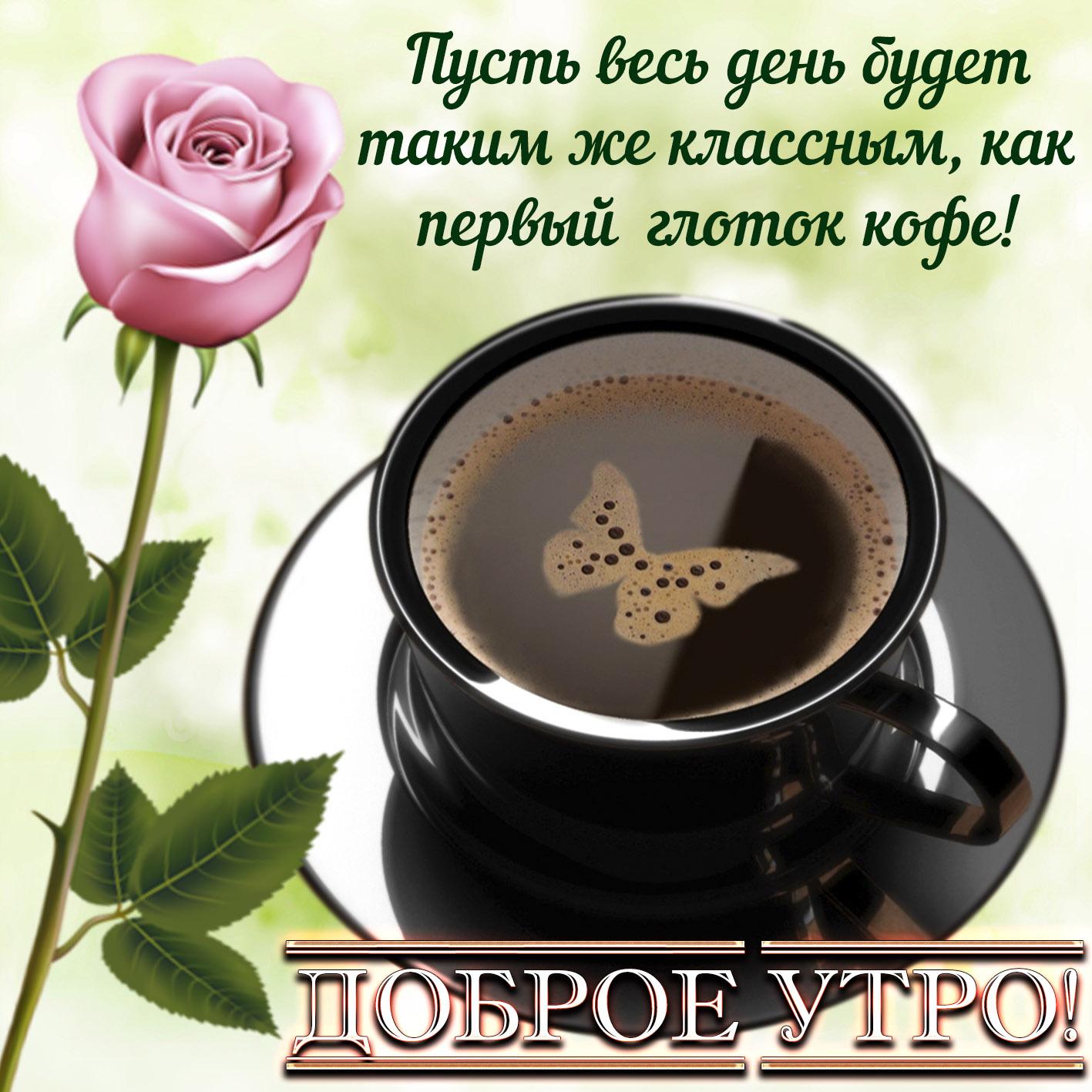 получит картинки с добрым утром с цветами и кофе с пожеланиями замечательная еда наелся