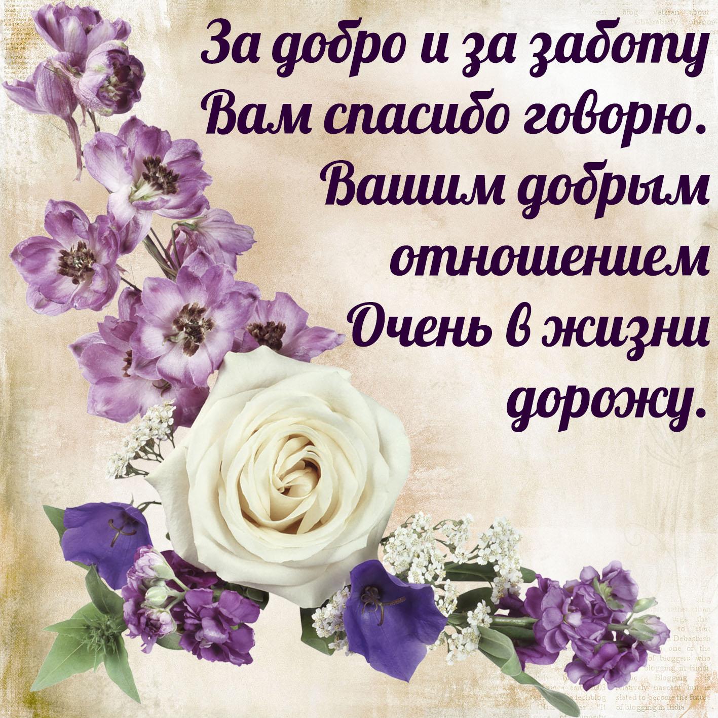 Будьте Добры Поздравления