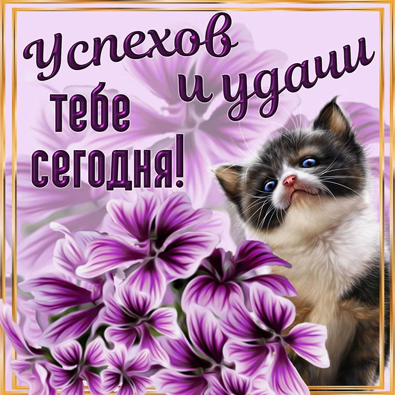 работал картинки с пожеланием удачи прикольные время казьмадемьяновской