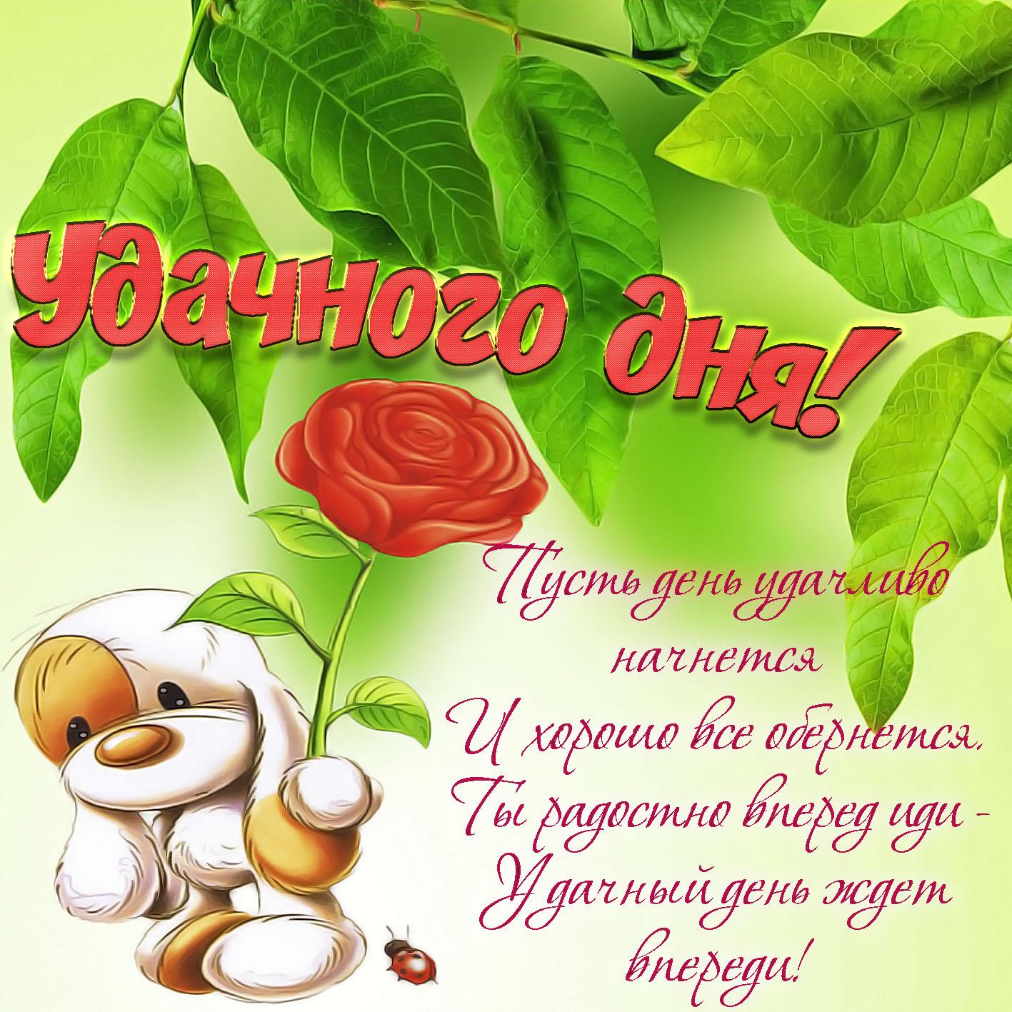 открытки с пожеланием доброго дня жене
