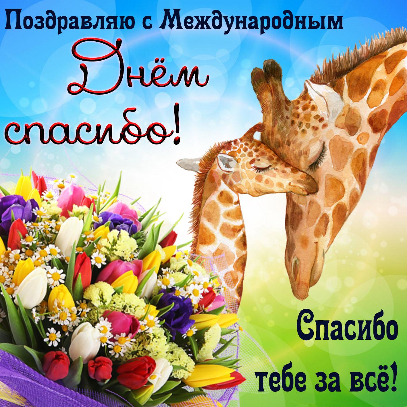 Поздравление с международный день спасибо