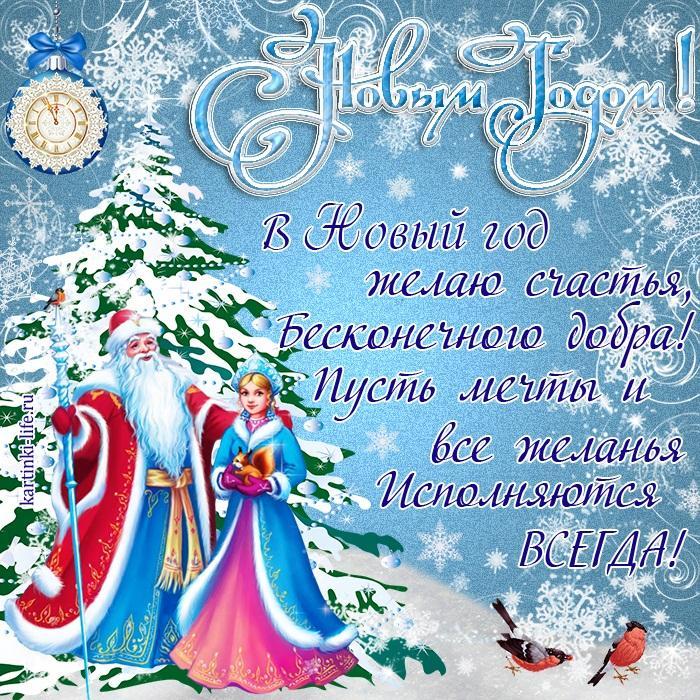 В Новый год желаю счастья, Бесконечного добра! Пусть мечты и все желанья Исполняются всегда!
