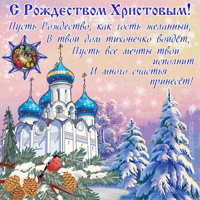 Пусть Рождество, как гость желанный, В твой дом тихонечко войдёт, Пусть все мечты твои исполнит И много счастья принесёт!