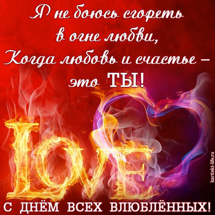 С Днём всех влюблённых! Я не боюсь сгореть в огне любви, Когда любовь и счастье – это ты!