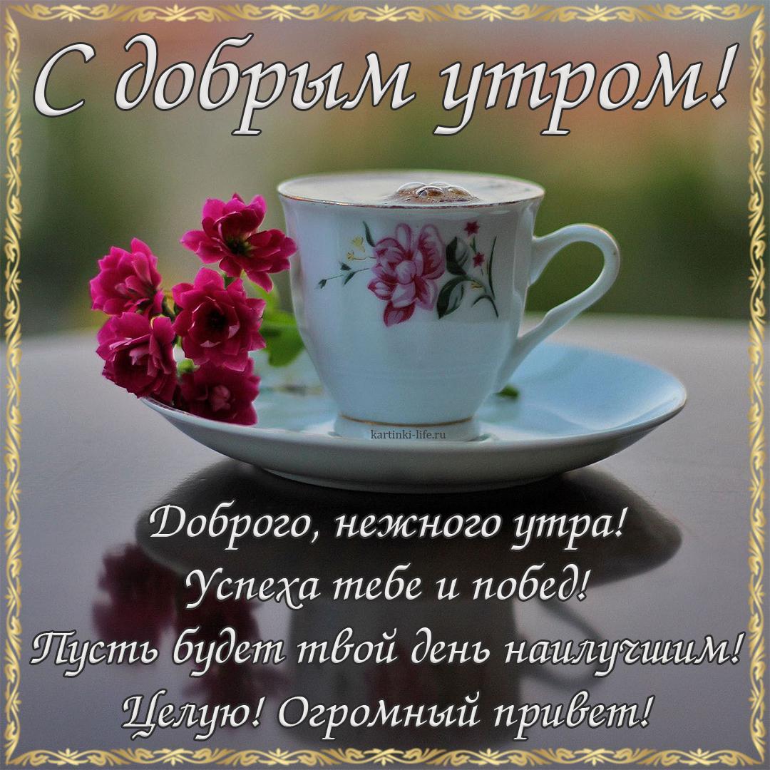 Днем, открытка с добрым утром милые друзья