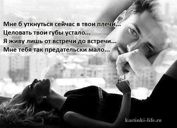 Мне б уткнуться сейчас в твои плечи... Целовать твои губы устало... Я живу лишь от встречи до встречи... Мне тебя так предательски мало...