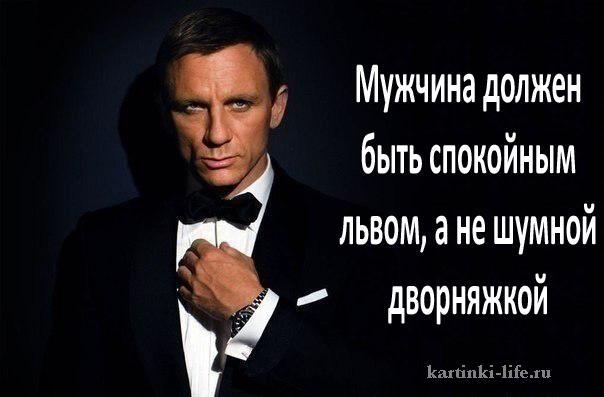 Мужчина должен быть спокойным львом, а не шумной дворняжкой.