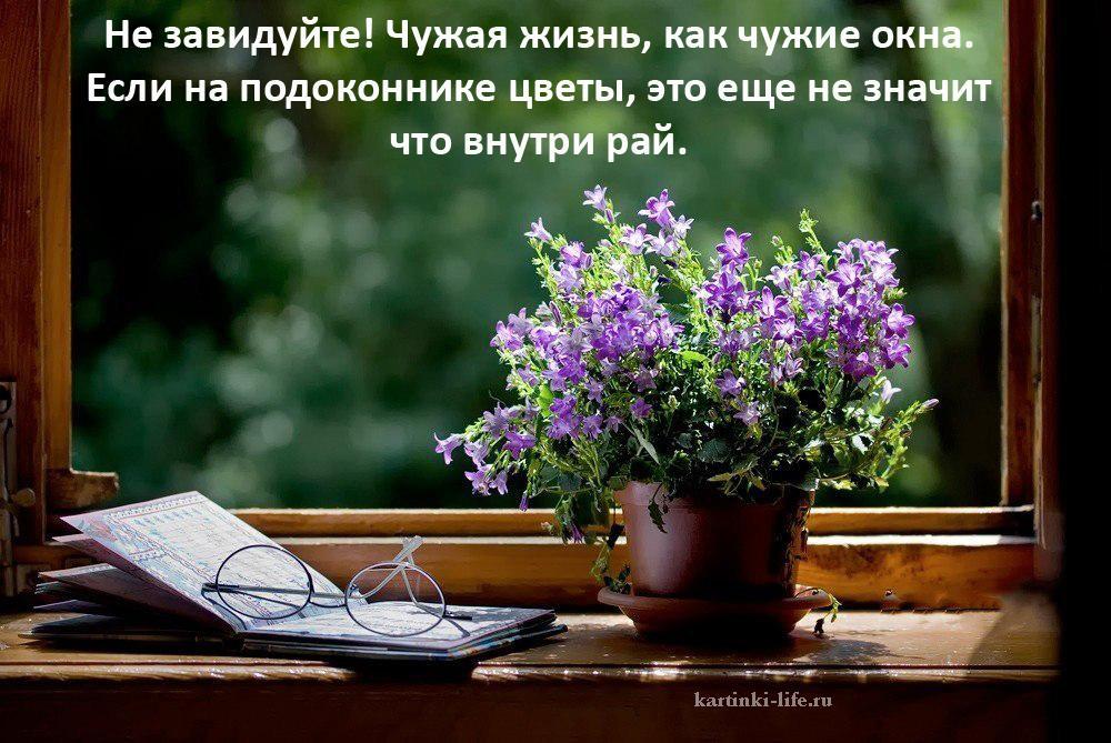 Не завидуйте! Чужая жизнь, как чужие окна. Если на подоконнике цветы, это еще не значит что внутри рай.