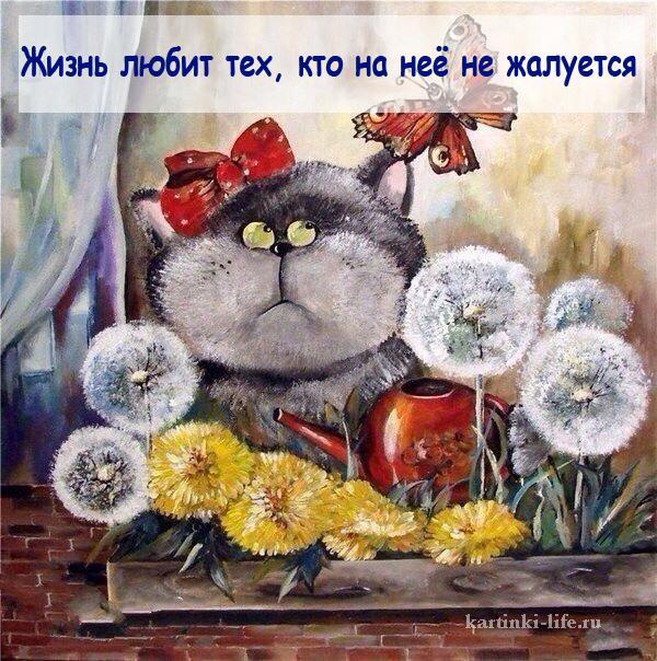 Жизнь любит тех, кто на неё не жалуется.