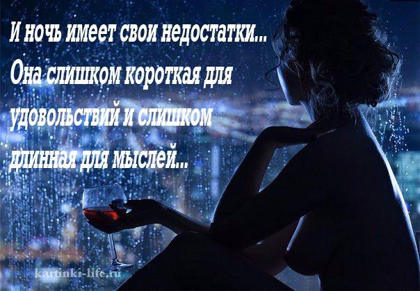 И ночь имеет свои недостатки... Она слишком короткая для удовольствий и слишком длинная для мыслей...