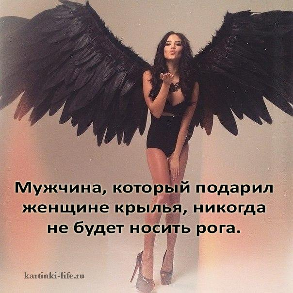 Мужчина, который подарил женщине крылья, никогда не будет носить рога.
