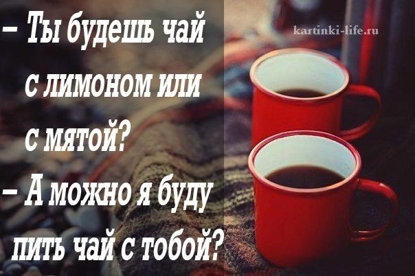 тина хочу к тебе на чай только без чая картинки разновидность это
