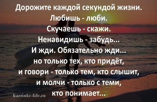 Дорожите каждой секундой жизни. Любишь - люби. Скучаешь - скажи. Ненавидишь - забудь... И жди. Обязательно жди... но только тех, кто придёт, и говори - только тем, кто слышит, и молчи - только с теми, кто понимает...