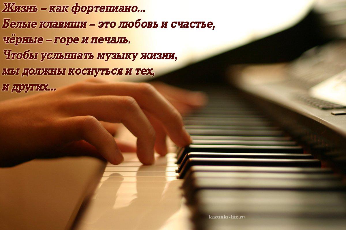Жизнь – как фортепиано... Белые клавиши – это любовь и счастье, чёрные – горе и печаль. Чтобы услышать музыку жизни, мы должны коснуться и тех, и других...
