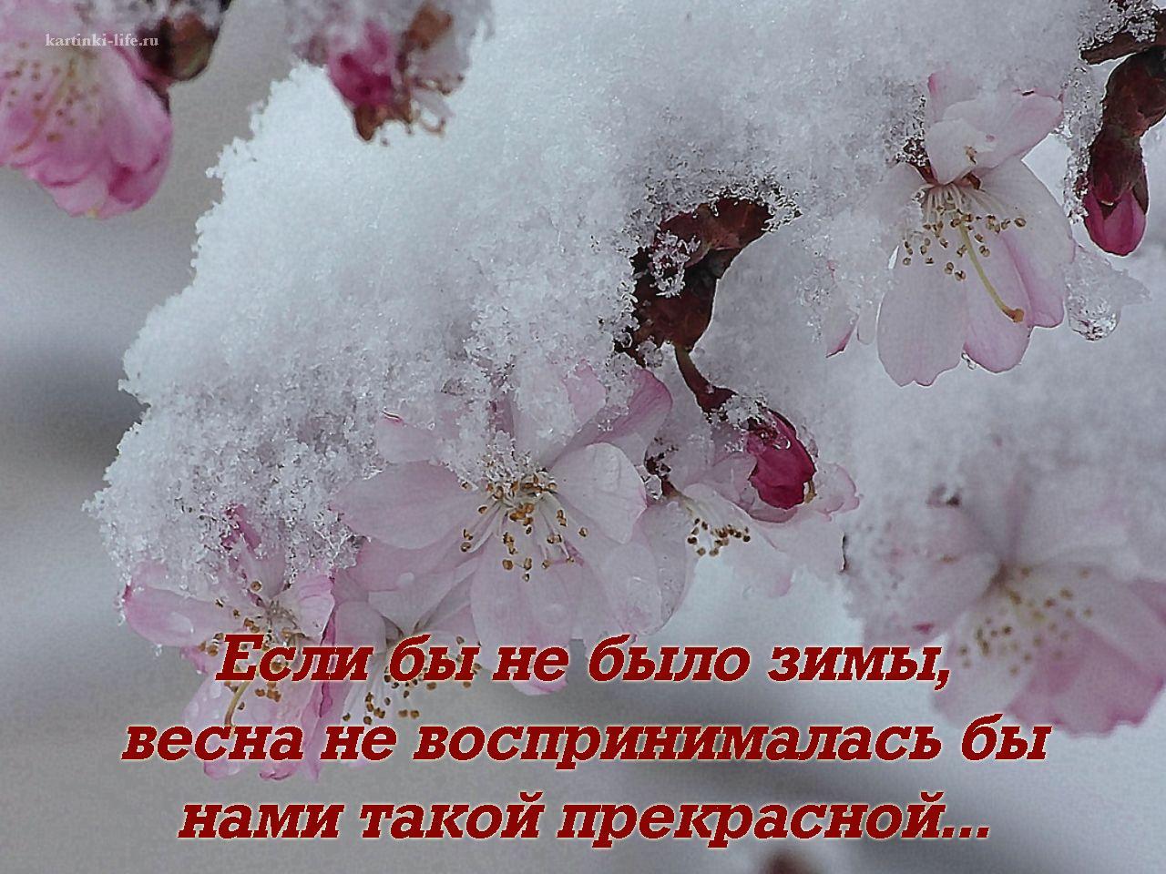 Открытки снег весной, про друзья