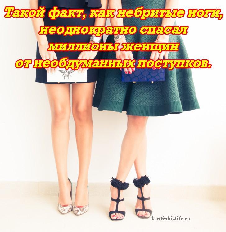 tolstaya-sela-nebritie-zhenskie-nogi-foto-smotret-huya-zhope-pizde