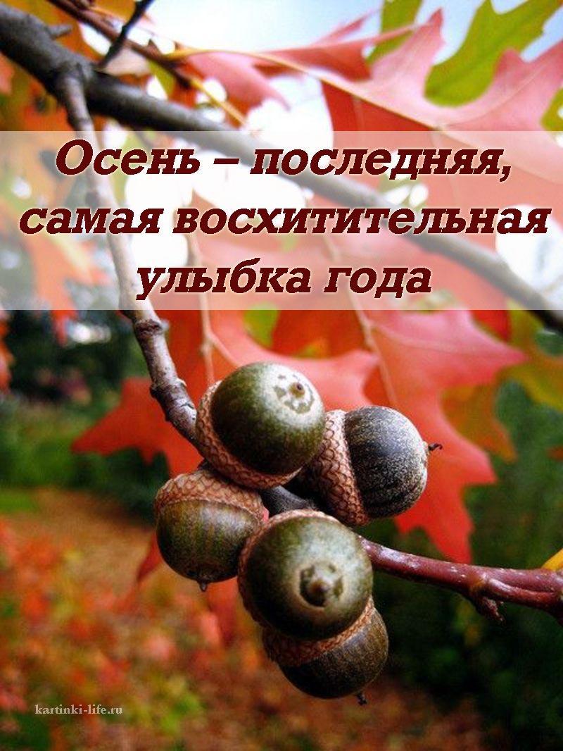 Осень – последняя, самая восхитительная улыбка года