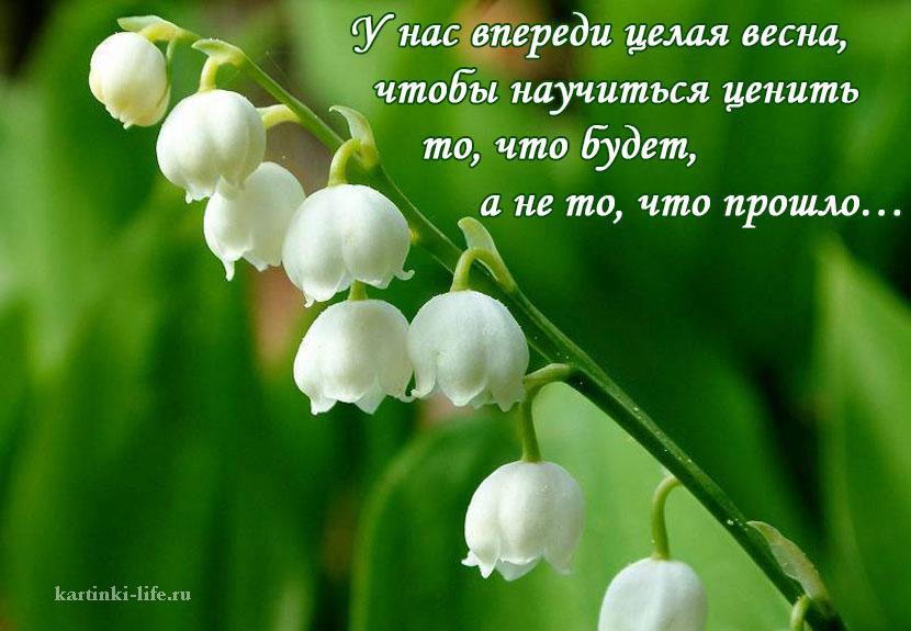 У нас впереди целая весна, чтобы научиться ценить то, что будет, а не то, что прошло…