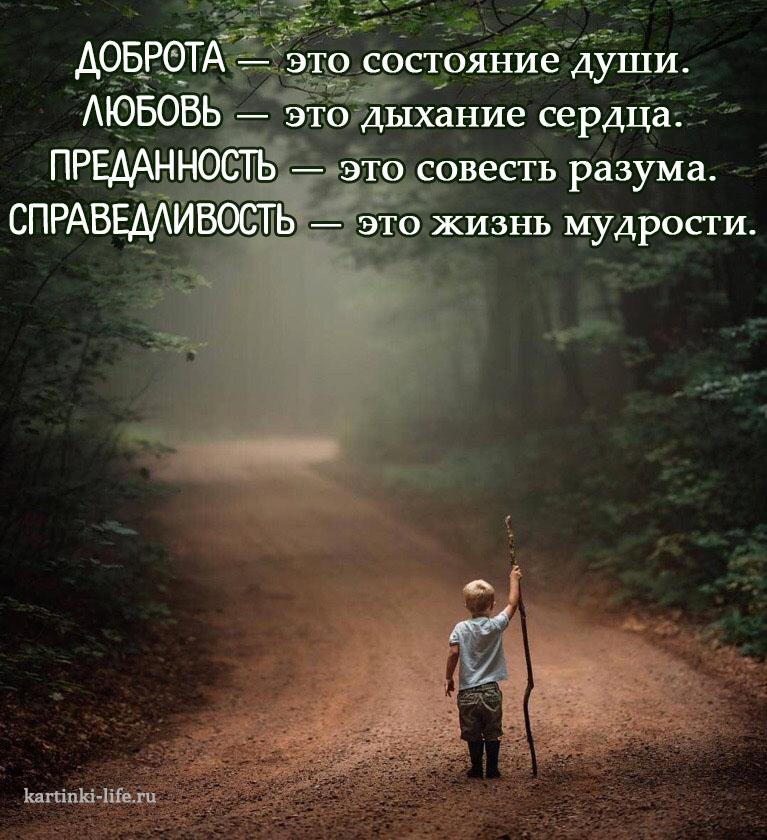 Доброта — это состояние души. Любовь — это дыхание сердца. Преданность — это совесть разума. Справедливость — это жизнь мудрости.