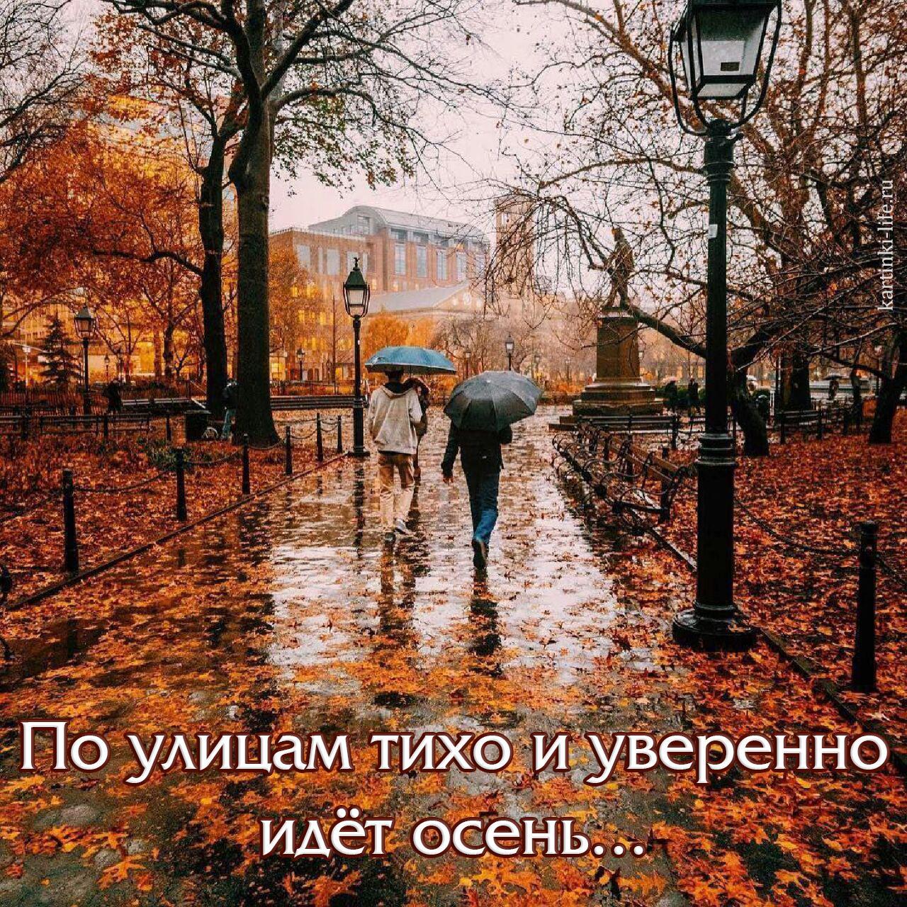 По улицам тихо и уверенно идёт осень...