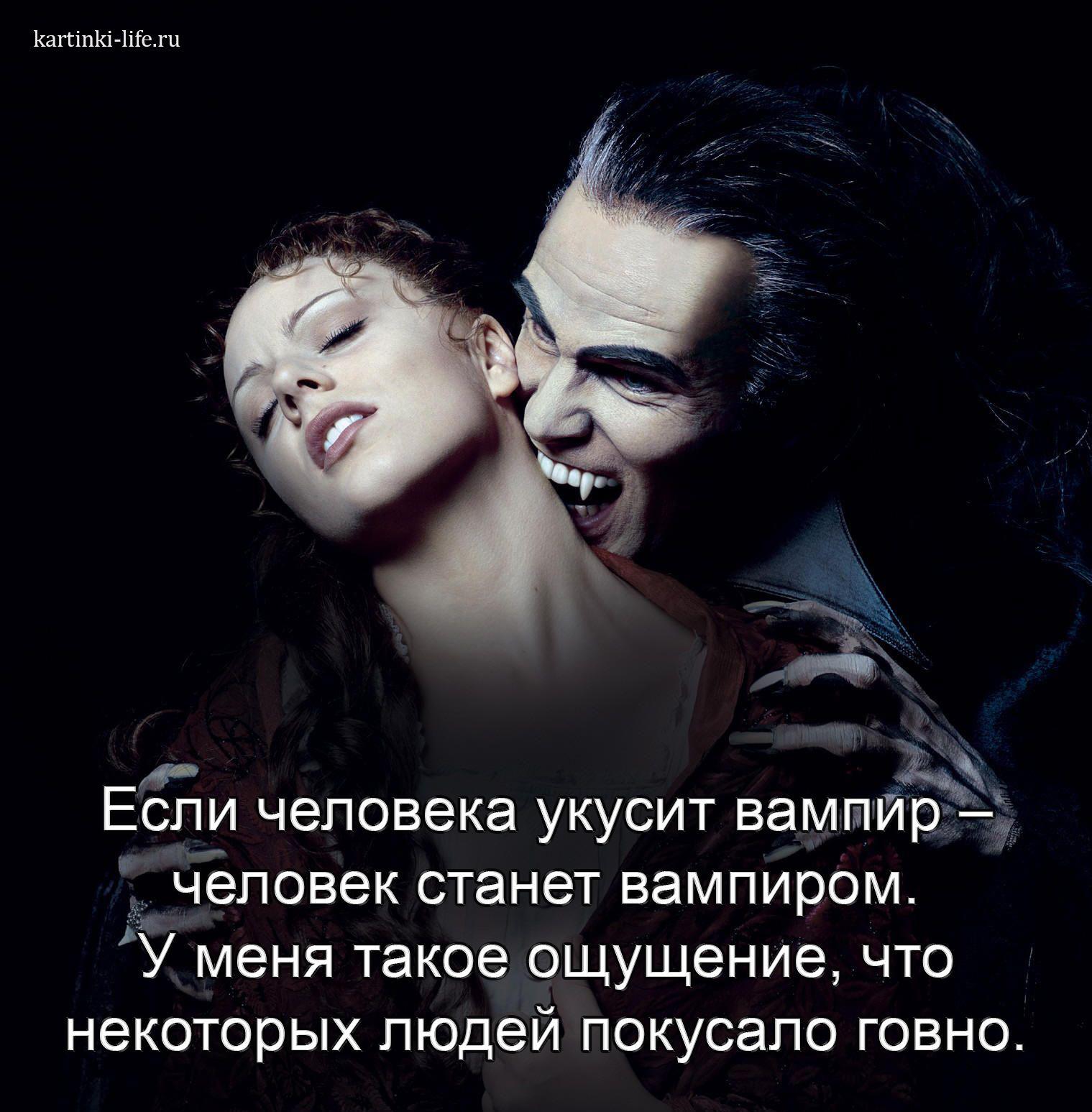 Если человека укусит вампир – человек станет вампиром. У меня такое ощущение, что некоторых людей покусало говно.