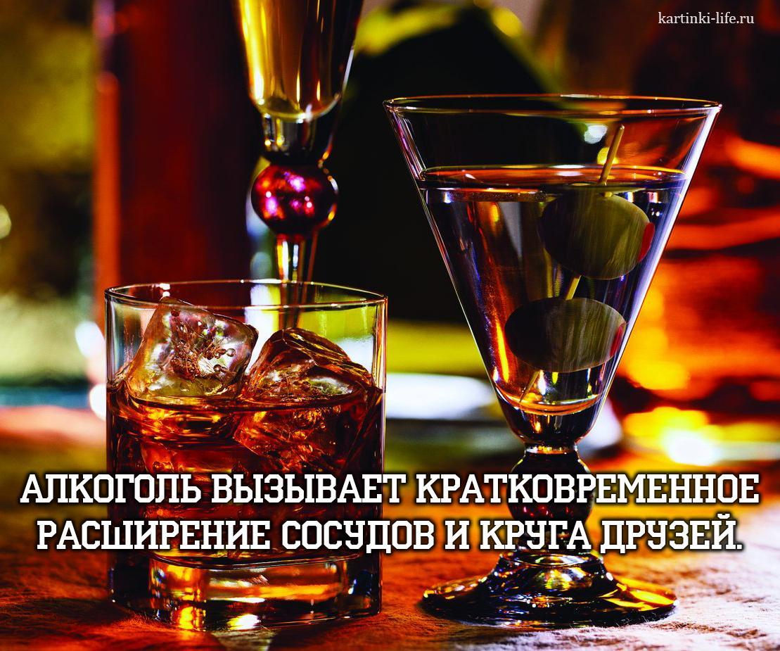 Алкоголь вызывает кратковременное расширение сосудов и круга друзей.