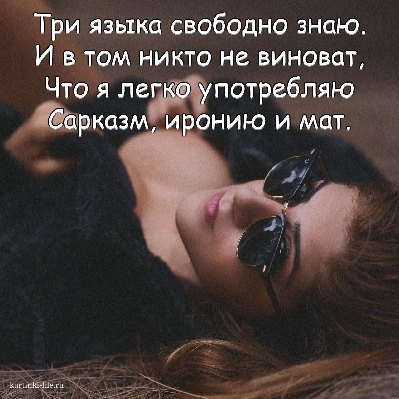 Три языка свободно знаю. И в том никто не виноват, Что я легко употребляю Сарказм, иронию и мат.