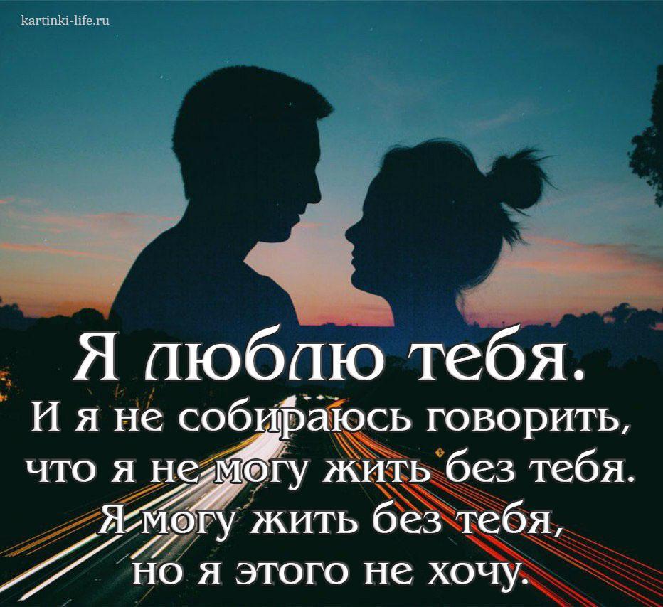 Я люблю тебя. И я не собираюсь говорить, что я не могу жить без тебя. Я могу жить без тебя, но я этого не хочу.