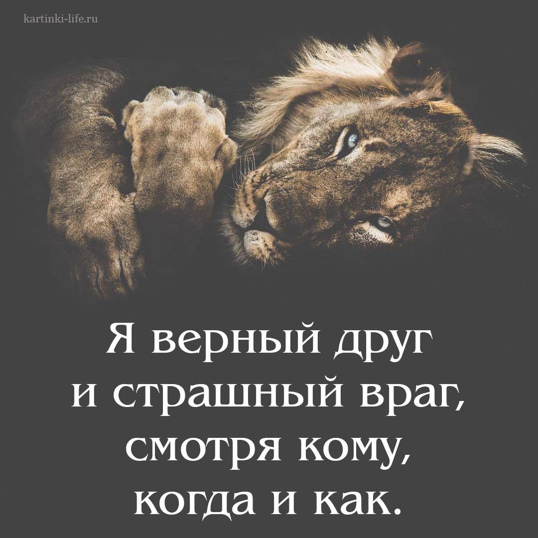 Я верный друг и страшный враг, смотря кому, когда и как.